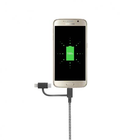 Câble avec Connecteur USB vers Lightning (2m) - BELT - Zébré