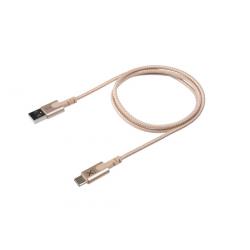 Câble avec connecteur USB vers USB-C (1m) - Or